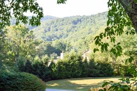 Christmas Tree Farm For Sale Boone Nc by Boone Beercaion A Boone Brewery Guide The Wandering Gourmand