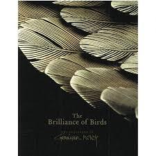 The Brilliance Of Birds Exhibition Catalogue 2007
