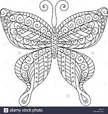 Coloring Book For Adult And Older Children Page Outline Drawing Decorative Butterfly In Frame