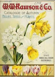1900 catalogue of autumn bulbs seeds and small plants