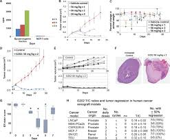 Pumpkin Seeds Prostate Pubmed by Engineering A Prostate Specific Membrane Antigen U2013activated Tumor