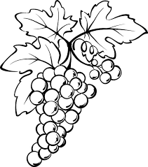 Grapes From Spain Coloring Pages