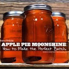 Best Pumpkin Pie Moonshine Recipe by Best 25 Apple Pie Moonshine Ideas On Pinterest Tailgate Drinks