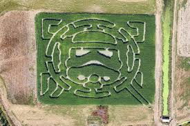 Pumpkin Patch Portland by 36 Great Corn Mazes Across America Farm Flavor
