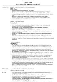 Tax Resume Sample - Major.magdalene-project.org Ultratax Forum Tax Pparer Resume New 51 Elegant Business Analyst Sample Southwestern College Essaypersonal Statement Writing Tips Examples Template Accounting Monstercom Samples And Templates Visualcv Accouant Free Professional 25 Unique 15 Luxury 30 Latter Example