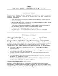 Summary Of Qualifications Resume Customer Service Templates Representative Inspirationa Profile Examples
