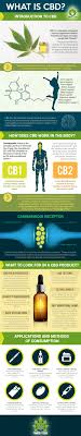CBD: Best 30 CBD Oil Products And Top 70 CBD Companies (2019) Ocado Group Plc Annual Report 2018 By Jones And Palmer Issuu What Your 6 Favorite Movies Have In Common Infographic Tyroola Sydney Groupon Lord Royal Oil Is Now The Highestconcentrated Cbd Santa Muerte Profound Lore Records Worlds Finest Products Untitled Web Coupons Tell Stores More Than You Realize New York Empyrean Islesonline Vinyl Record Store Layout 1 Page Dark Knight Returns Golden Child Joelle Variant Offers 20 Off To Military Retail Salute