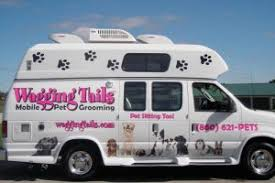 mobile cat grooming wagging tails pet sitting mobile grooming wagging tails pet