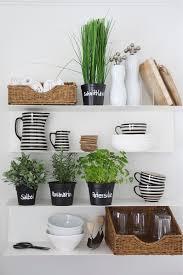 kräuter in der küche so könnt ihr diese dekorativ platzieren