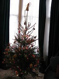 Type Of Christmas Tree That Smells by Norway Spruce Wendy Wallacewendy Wallace