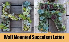 Leave The Pallet Garden In Horizontal Position For A Few Weeks To Establish Young Plants After Lift Up And Lean It