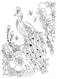 Download Vector Illustration Zen Tangle Peacock And Flowers Doodle Drawing Coloring Book Anti