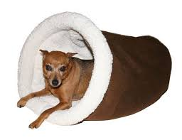 Cozy Cave Dog Bed Xl by Best 25 Cave Dog Bed Ideas On Pinterest Dog Cave Dog Sleeping