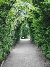 average mom blog matthaei botanical gardens conservatory