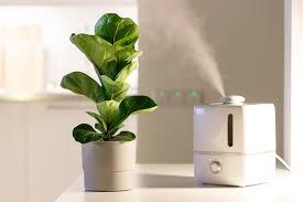 luftreiniger und luftbefeuchter gegen pollen so funktioniert es