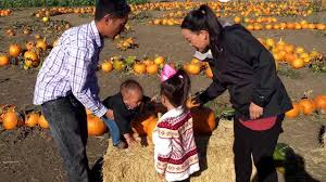 Pumpkin Patch Marana by Pumpkin Patch Family Time Youtube