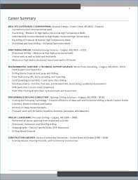 Writing A Resume Summary From Examples