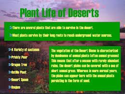 Earth Floor Biomes Desert by Desert Biome Ppt Online Download