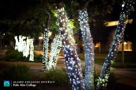 Christmas Tree Lane Ceres Ca Address by Christmas Tree Lane Palo Alto Christmas Cards