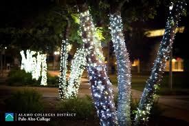 Christmas Tree Lane Turlock Ca by Christmas Tree Lane Palo Alto Christmas Cards