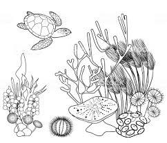 Coloriage Dessin Aborigène De Tortue Marine Coloriages à