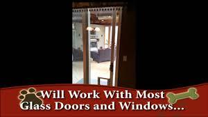 Doggie Door Insert For Patio Door by Hale Pet Door In Glass Dog Door Youtube