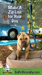 Making A Zip Line For Your Dog | Campsite, Yards And Park Backyard Zip Line Alien Flier 2016 X2 Kit Installation Youtube 25 Unique Line Backyard Ideas On Pinterest Zipline How To Construct A 5 Steps With Pictures Wikihow Diy Howto Install Tighten A Zip Line Easy Trick Build Without Trees Outdoor Goods Toy Homemade Summer Activity Play Cable Run For Your Dog Itructions Photos Make Zipline Or Flying Fox At Home Science Fun How To Make Your Own 100 Own