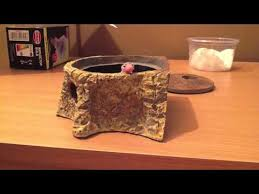 Crested Gecko Shed Box by Hatchling Gecko In Her Little Moss Box Hide Youtube