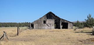File:Old Barn In Wasco County, Oregon.jpg - Wikimedia Commons A Pretty Old Barn The Bookshelf Of Emily J Kristen Hess Art Rustic Shed Free Stock Photo Public Domain Pictures Usa California Bodie Barn On Plains Royalty Images Wood Vintage Building Old Home Country Wallpapers Pack 91 44 Barns And Folks Maxis Comments Vlad Konov August Grove Ryegate Rainy Day 3 Piece Pating Print Overgrown Warwickshire England Picture Renovation Inhabitat Green Design Innovation Farm Buildings Click Here For A Larger View