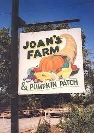 Alameda Pumpkin Patch 2015 by Joan U0027s Farm And Pumpkin Patch California Haunted Houses