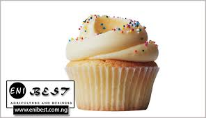 How To Start Cupcake Business In Nigeria Simple Guide