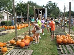 Pumpkin Patch Parable Craft by The Peanuts Gang Would Be Envious Of Mandarin United Methodist U0027s