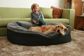 Chewproof Dog Bed by Raised Dog Beds Pvc U2014 Jen U0026 Joes Design Build Pallet And Raised