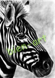 biens afrika zebra