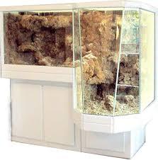 l aquarium récifal