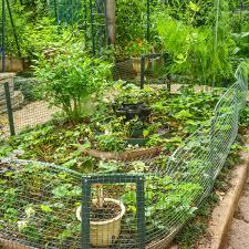 Garden Ideas Diy Homsgarden