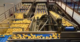 siege pomme de parmentine s offre une nouvelle usine de conditionnement de pommes