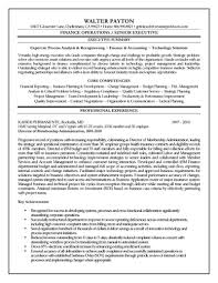 Sample Resumes For Accountants And Financial Professionals