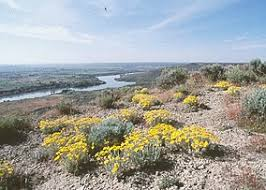 Tule Springs Fossil Beds National Monument by Hagerman Fossil Beds National Monument Wikipedia
