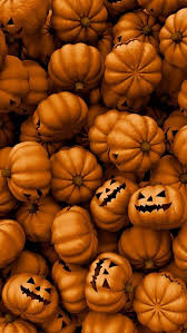 Mikes Pumpkin Patch Jacksonville Nc by 348 Best Autumn Leaves U0026 Pumpkins Images On Pinterest Beautiful