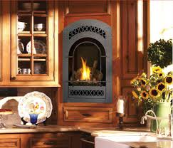 Check Out Our Online Fireplace Store Ann Arbor MI Clean Sweeps MI