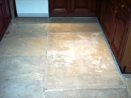 tile doctor tile grout cleaning and sealing