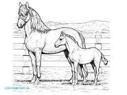 Large Size Of Horse Coloring Pages Printable Super Ideas Western Cowboy For Kids Jumping To Print