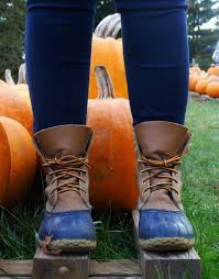 Pumpkin Patch Ct 2015 by October 2015