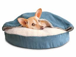 Bolster Dog Bed by Furhaven Snuggery Hooded Dog Bed U0026 Reviews Wayfair