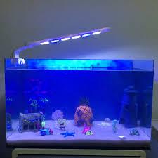 Spongebob Aquarium Decorating Kit by Spongebob Fish Tank Decor Set 100 Images Aliexpress Com Buy