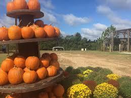 Pumpkin Patch Toledo Ohio by Barn Hill Preserve Home Facebook