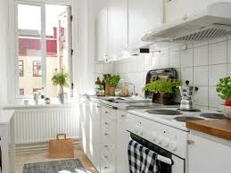 Apartment Kitchen Decorating Ideas On A Budget Top Small Solutions Images