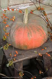 Bergmans Pumpkin Patch by 488 Best Painting Ideas Images On Pinterest Painting Paintings