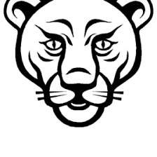Lion Head Coloring Page Free Black And White Stock